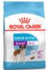 Royal Canin Giant Junior Active (Роял Канин Джайнт Юниор Актив), 15кг