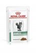 Royal Canin Diabetic Feline Корм диетический для взрослых кошек при сахарном диабете, соус, 0,085 кг