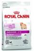 Royal Canin Indoor Junior (Роял Канин Индор Юниор), 0,5кг