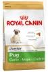 Royal Canin Pug Junior (Роял Канин Мопс юниор), 1,5кг.