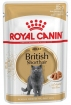Royal Canin British Shorthair Adult (в соусе), 85г(12шт)